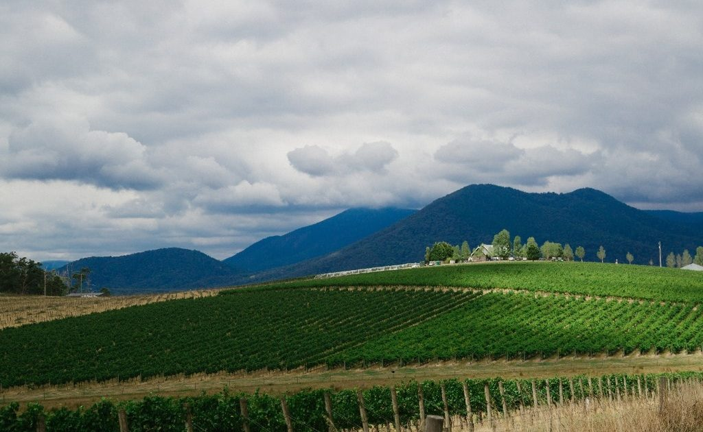 About Yarra Valley